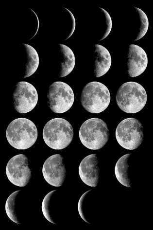 2010年农历七月的月亮位置及形状图片