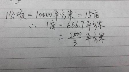 一亩地是几平方米_一亩等于多少平方米?