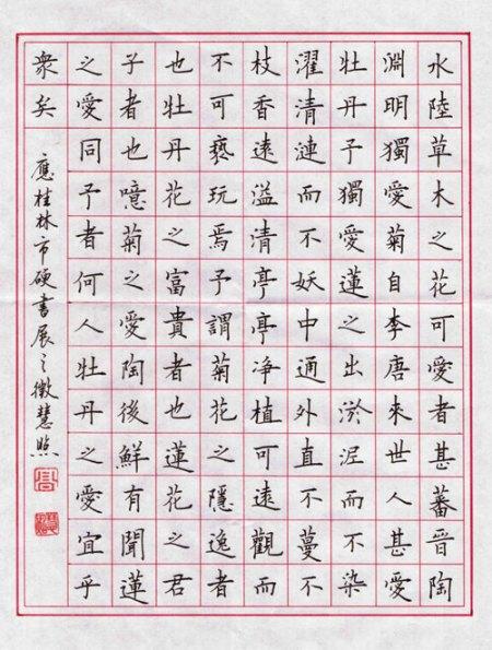 硬笔书法A4纸的格式图片
