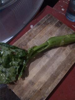 求这种蔬菜的名字