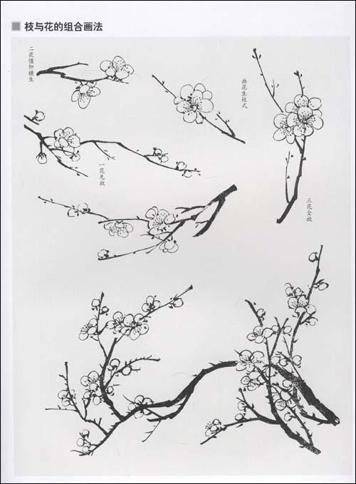 如何画梅花简笔画,植物花卉 简笔画 大全 梅花简笔画图片大全 11 简