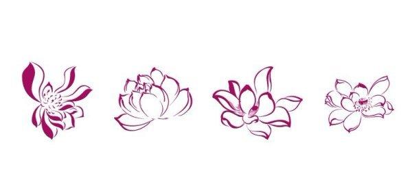 Chinese Flower Line Drawing : 莲花怎么画,要图片 百度知道