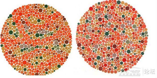 请问这张图片是测试红绿色盲的么?图片上是什么呀? 百度知道