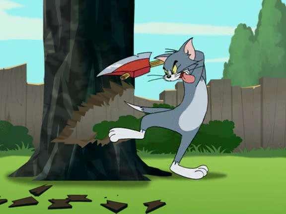 美国动画片《猫和老鼠》前几集讲什么?图片