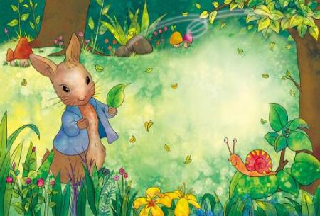 《彼得兔动画片全集》的品牌故事是怎样的?